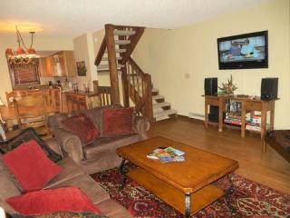 Crested Mtn. North #J5 - Crested Butte vacation rentals