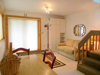 2 bedroom Apartment with Hot Tub in Crested Butte - Crested Butte vacation rentals
