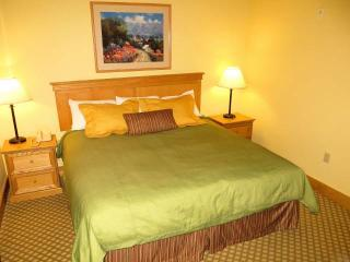 Grand Lodge #174 - Crested Butte vacation rentals