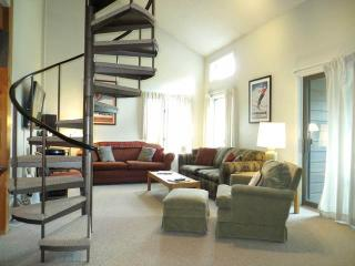 Cozy 3 bedroom Condo in Crested Butte - Crested Butte vacation rentals
