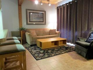 Nice Condo with Hot Tub and Fireplace - Crested Butte vacation rentals