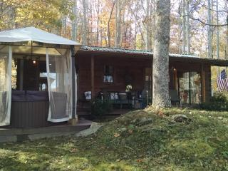 Mountain Log Cabin with Long Range Views - Waynesville vacation rentals