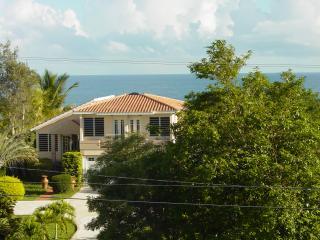 Villa Casa Maria  (WIFI) Hatillo/ Camuy/Aquadilla - Hatillo vacation rentals