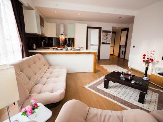 IKITELLI DAILY RENT RESIDANCE - Istanbul vacation rentals