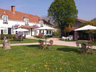 Domaine les Gandins - Allier Department vacation rentals