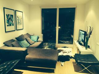 Modern Apartment next to DLR station (Greenwich) - London vacation rentals