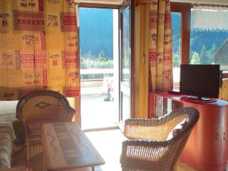 Appart 4-5 p,  les portes du soleil with terrace - La Chapelle-D'Abondance vacation rentals