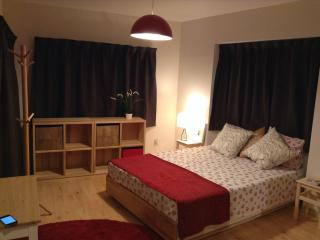 Wonderful Location 7 - Tokyo vacation rentals