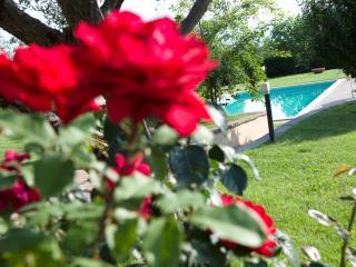 Touristic rental close to Florence - Reggello vacation rentals