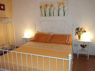 Lovely Flat- Historical Center - Panza vacation rentals