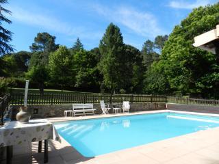 Location saisonniere parc piscine St Jean du Gard - Saint-Jean-du-Gard vacation rentals