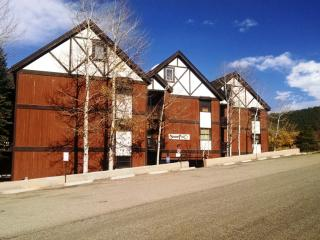 3 BR/ 2 BA Condo, WiFi, Balcony, 3 Blocks to Lift - Angel Fire vacation rentals
