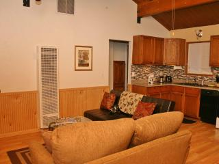 White Woodland Cabin - Big Bear City vacation rentals