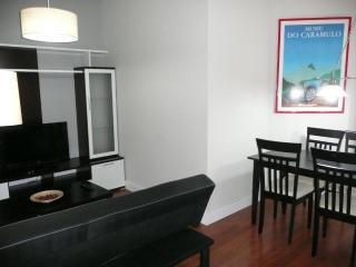 Floor 2 Double Bedrooms And 2 Baths, Downtown 2 C   Piso De 2 Dormitorios Dobles Y 2 Baños, Centro Ciudad 2 C - Salamanca vacation rentals