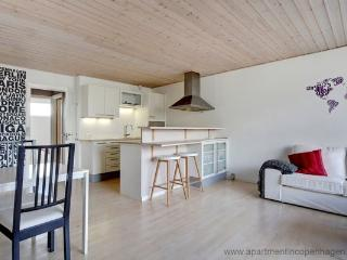 Vesterbro - Close To Central Station - 632 - Denmark vacation rentals