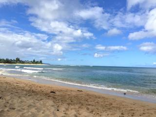 Velzey Land Sweet Spot - Totally Dialed In Studio - Haleiwa vacation rentals