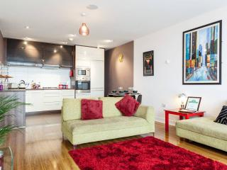 Luxury 3 bed apartment in Titanic Quarter - Belfast vacation rentals