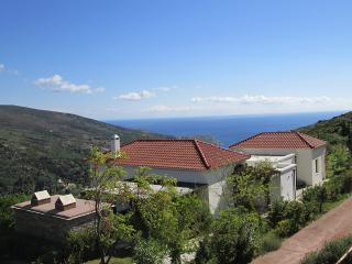 Design villa in Andros with panoramic view around - Andros Town vacation rentals