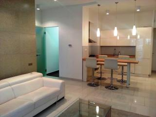 Luxury one bedroom apartment with balcony on the city center - Hungary vacation rentals