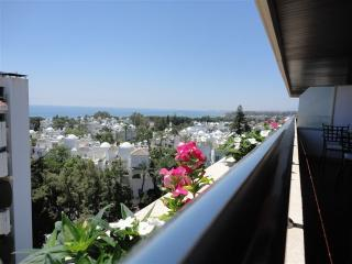Large apartment, amazing views with huge terrace - Alameda vacation rentals
