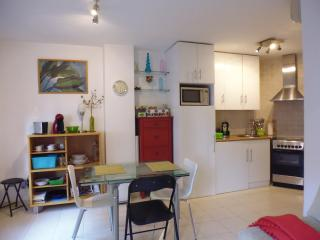 DOWN TOWN, SHOPPING AREA - Alicante vacation rentals