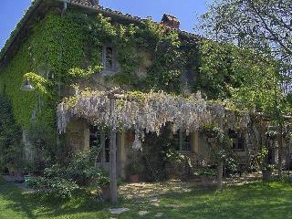 Country House in Toscana - Pergine Valdarno - Pergine Valdarno vacation rentals