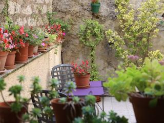 Apartment Moliere - Pezenas vacation rentals