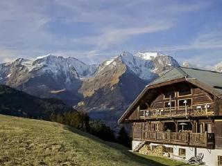 Authentic Chalet La Montagne with Spa, Gym, Private Chef & direct Ski Access - Megève vacation rentals