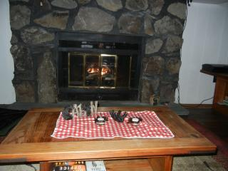 Cozy Cabin with Deck and Internet Access - Gouldsboro vacation rentals
