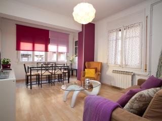4 Bedrooms Next To Paseo De Gracia - Barcelona vacation rentals