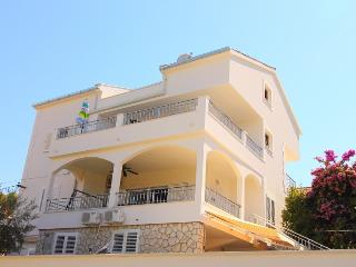 Nice Condo with Internet Access and A/C - Arbanija vacation rentals