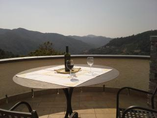 Villa L'antica Torre -Tower,charming country House - Castiglione Chiavarese vacation rentals
