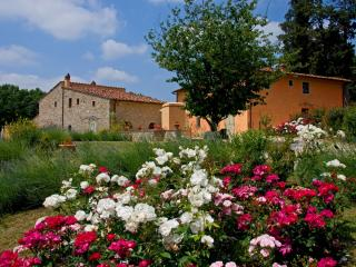 Orciaia country villa - San Casciano in Val di Pesa vacation rentals