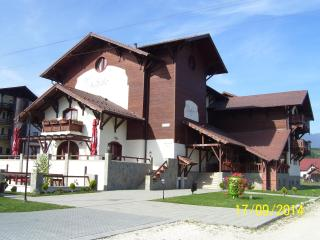 Bright 19 bedroom Villa in Bran with Elevator Access - Bran vacation rentals