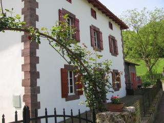 ETCHALUSSENIA -12 persons - Saint-Etienne-de-Baigorry vacation rentals