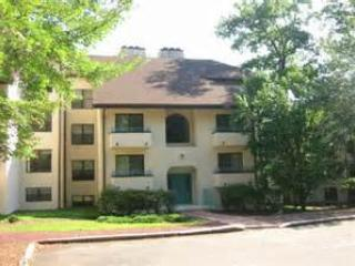 F199 Midlake Village at Big Boulder~Sleeps 10+ - Image 1 - Lake Harmony - rentals