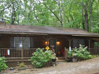Katydid Cabin in NE Georgia Mountains - Clayton vacation rentals