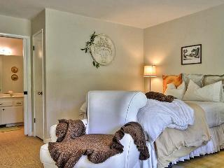 Le Petite Papillon ~ Walk to the Village of Carmel - Carmel vacation rentals