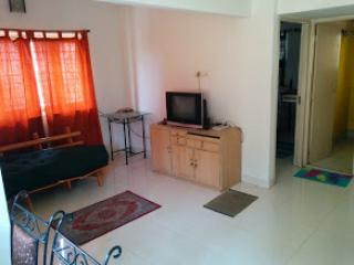 1 BHK Apartment near Deshpriya Park, Kolkata - Alipore vacation rentals