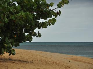 Simply Priceless - Las Terrenas vacation rentals