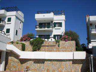 Gorgeous 3 bedroom Cesme Villa with A/C - Cesme vacation rentals