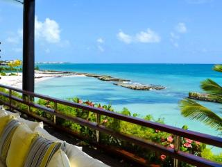 Caribbean PEARL, Beach and Ocean Front - Punta Cana vacation rentals