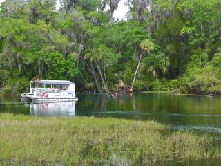 Rainbow River Home - Directly on Main Dive Springs - Dunnellon vacation rentals
