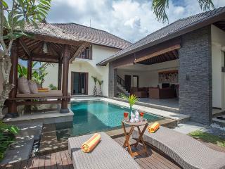 Two Bedroom Luxury Villa Canggu - Canggu vacation rentals