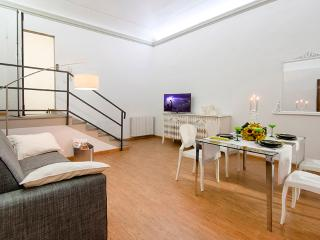 Luxury apartment Florence - BFY14013 - Florence vacation rentals