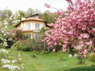 Italian Lakes 4 bedroom villa with pool - Poppino vacation rentals