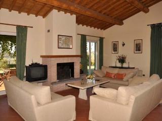 Villa near Rome (BFY148) - Magliano Sabina vacation rentals
