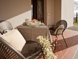 2 bedroom holiday rental Tuscany (BFY1307) - San Donnino vacation rentals