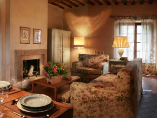 Luxury apartment in Tuscany (BFY13519) - Castellina In Chianti vacation rentals