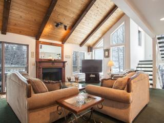 Vail Experience - Vail vacation rentals